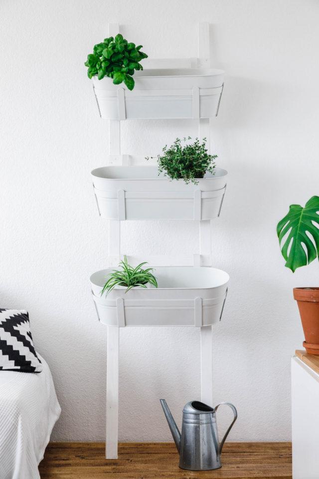 Fertige Pflanzleiter • Wie wir uns eine Pflanzleiter bauen