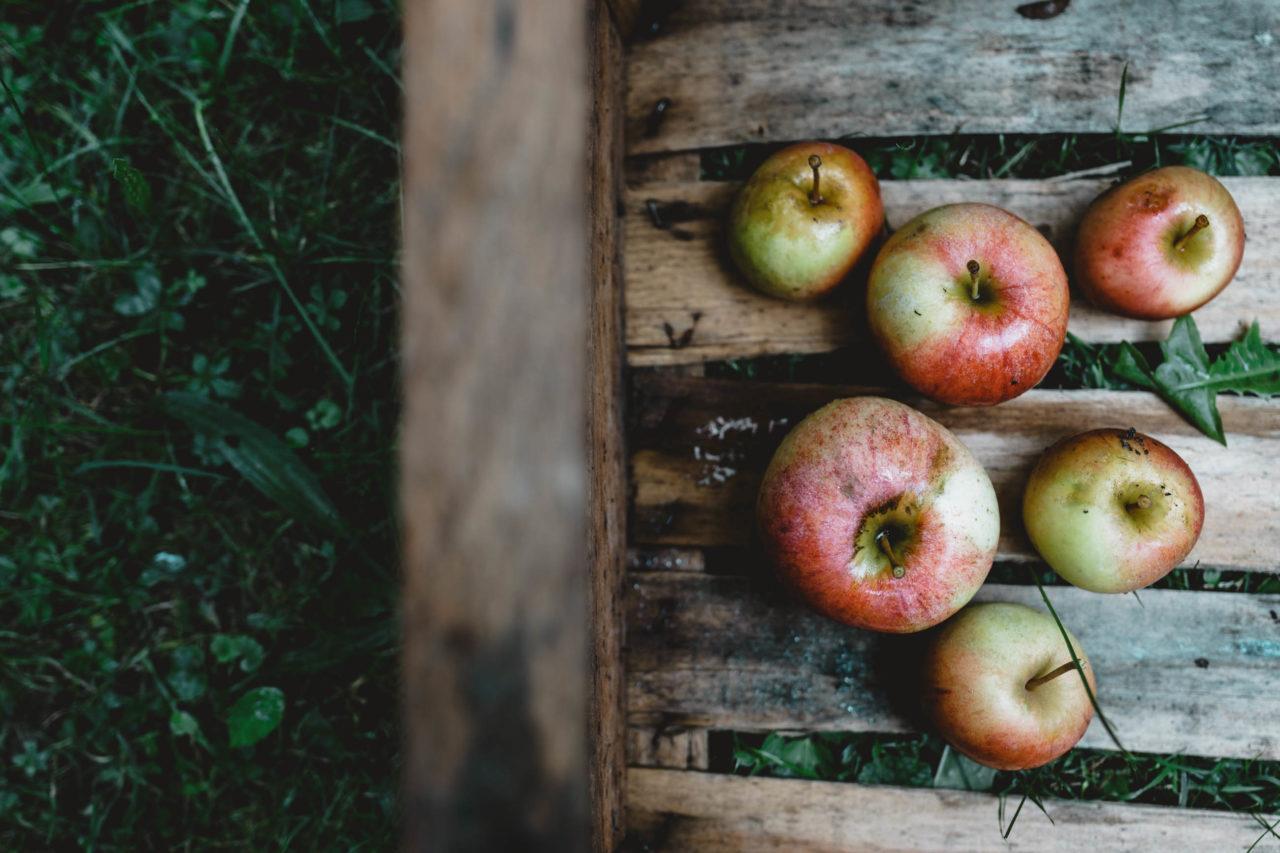 Apfelliebe – Regionale Äpfel vom Bodensee