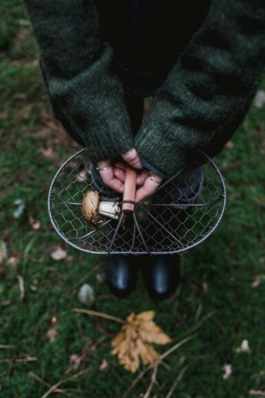 Herbstliche Crostini mit Pilzen